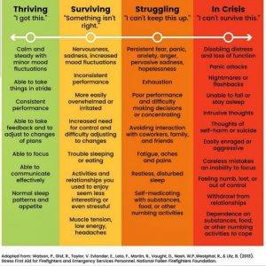 The Resilience Resource Stress Scale